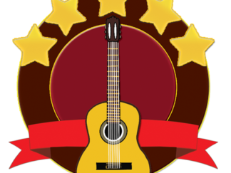 Level 5 Guitar Icon